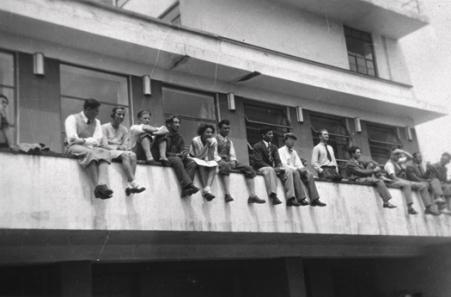 Bauhaus Groupie