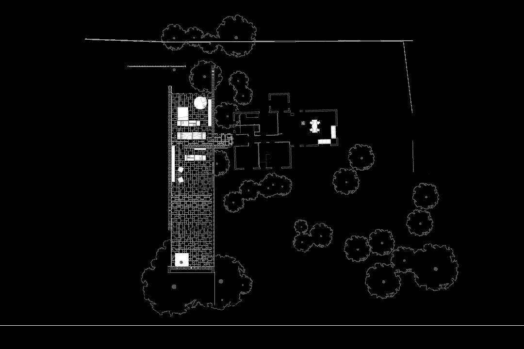 planta-iv-1080x720
